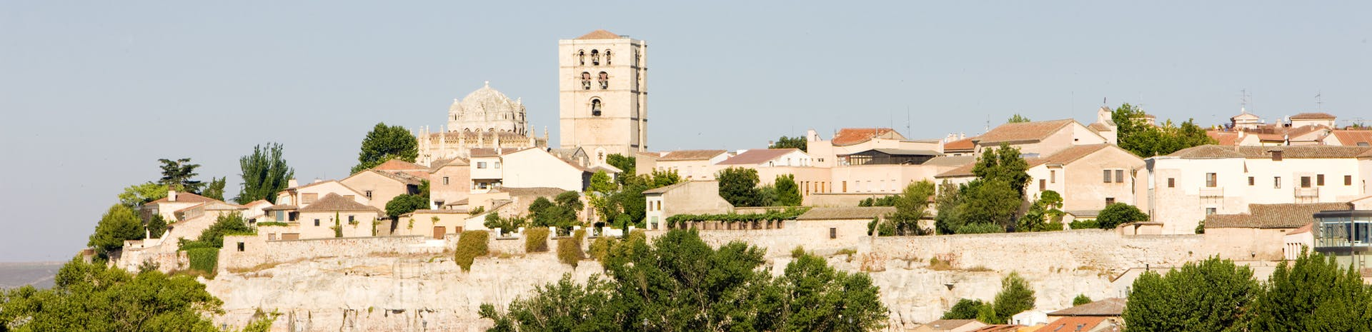 Picture of Zamora