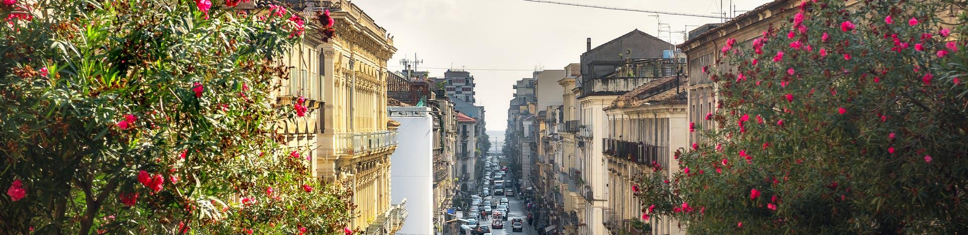 Picture of Catania