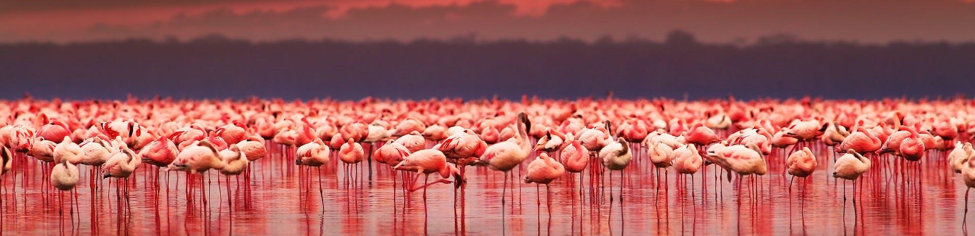 Picture of Eldoret
