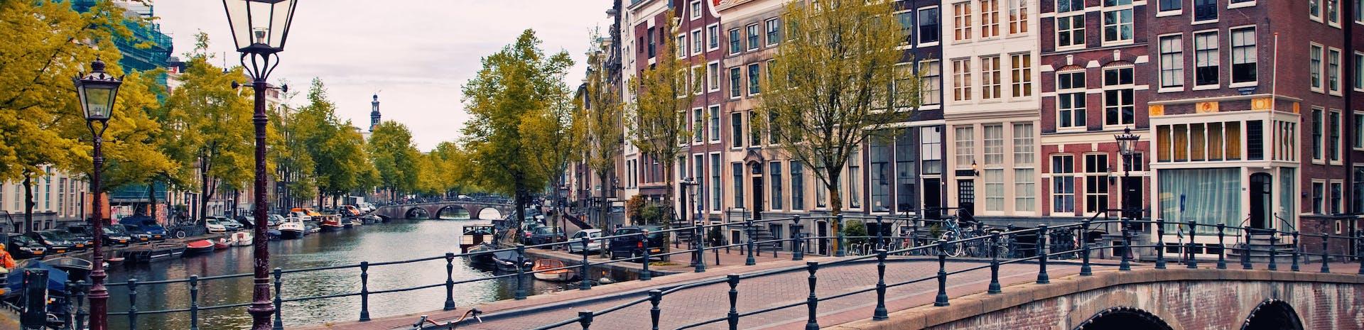 Picture of Alkmaar