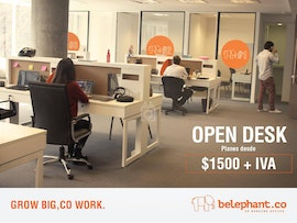 Belephant.co, Buenos Aires