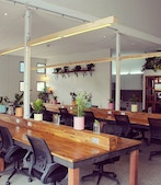Coworking space on / Grevillea Street profile image