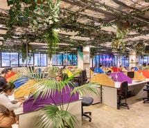 WOTSO WorkSpace - Hobart profile image