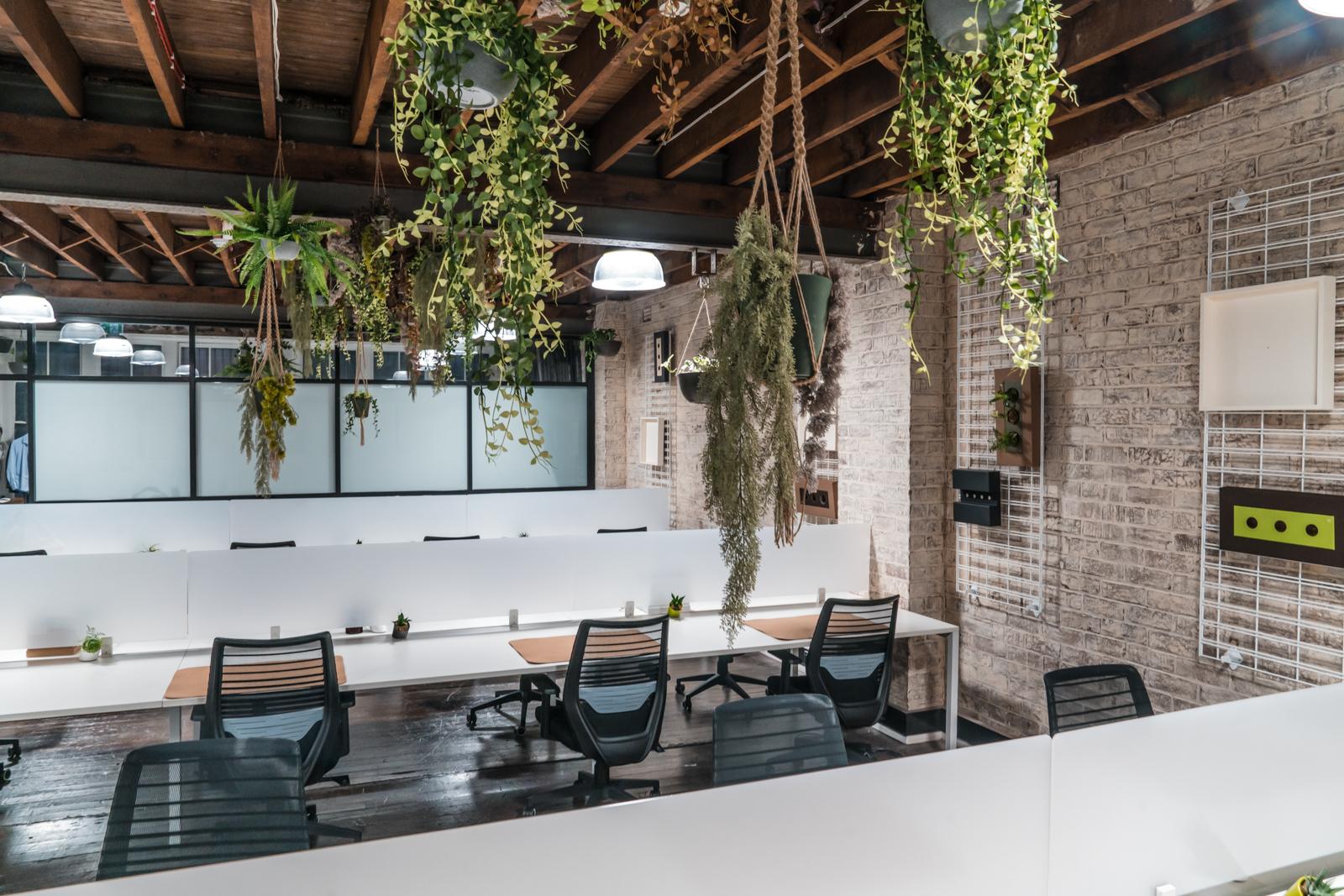 Seed Workspaces, Sydney