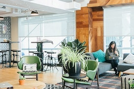 WeWork 50 Carrington St, Darlinghurst
