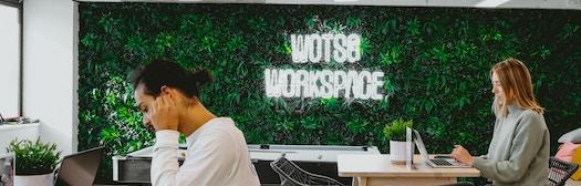 WOTSO WorkSpace - Woden profile image