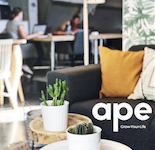 House of APE, Antwerp
