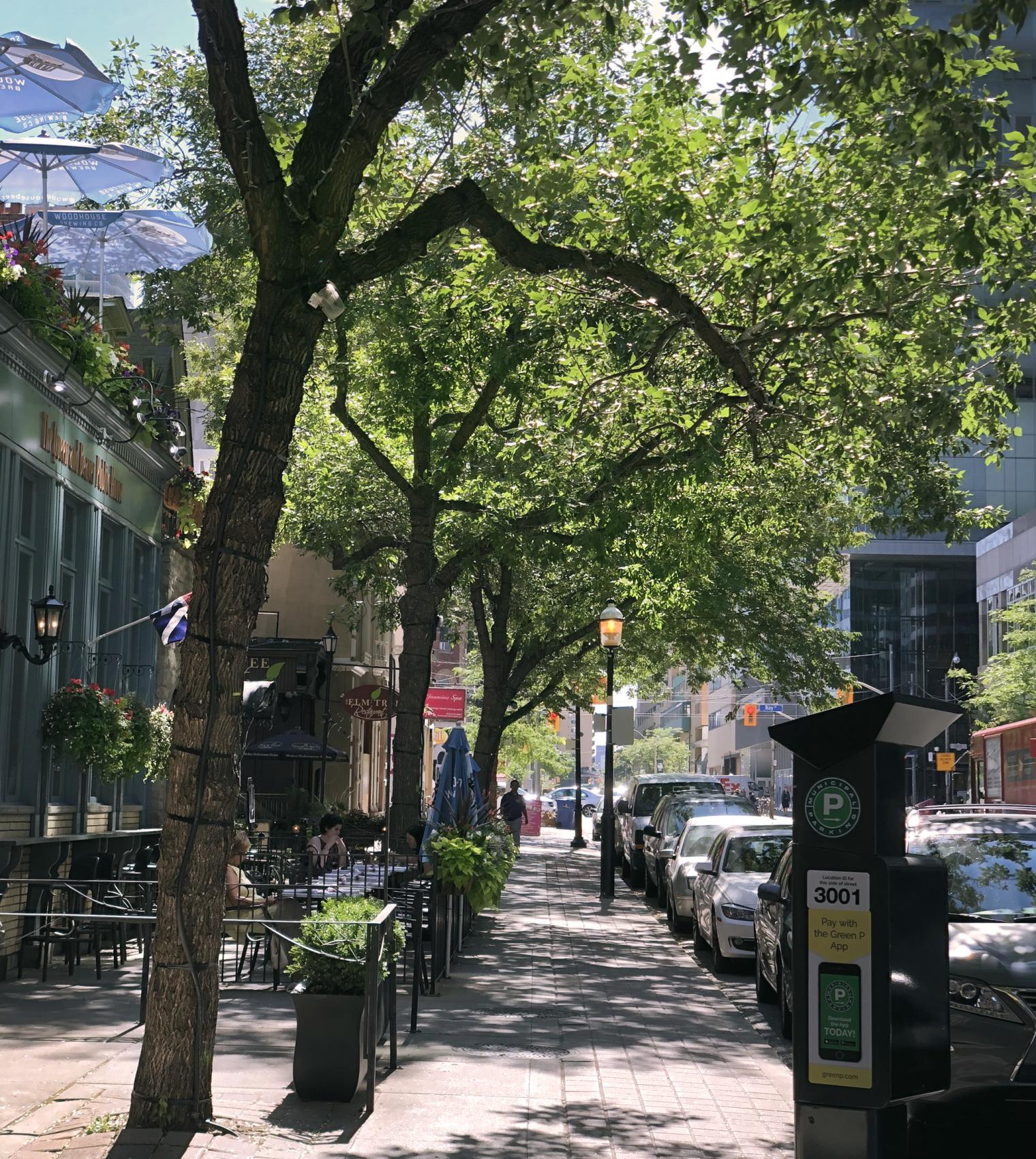 Bloomsbury Chambers, Toronto