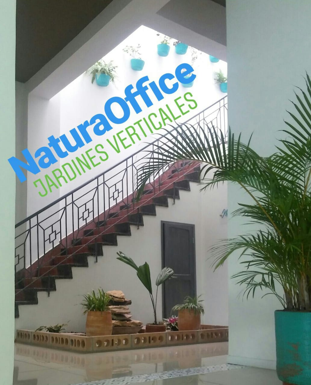 NaturaOffice, Cali