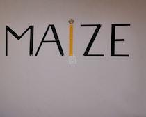 Maize coworking profile image