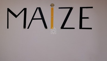 Maize coworking image 1