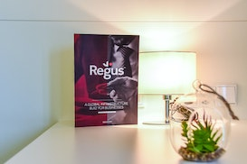 Regus Wiesbaden Connect, Mainz