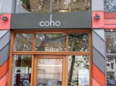 Coho image 5