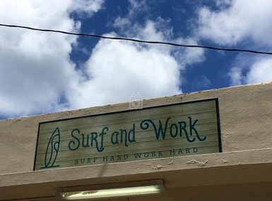 Surf and Work image 3