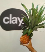 Clay - Coworking for Creative Minds profile image