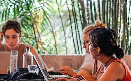 Dojo Bali, Bali