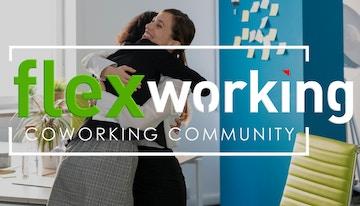 Flex working image 1