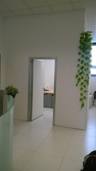 New Work Srl, Milan