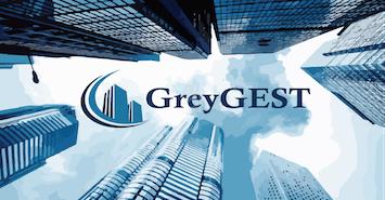 GreyGEST Srls profile image