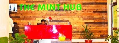 The Mint Hub