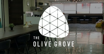 The Olive Grove profile image