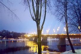 Nessie at work, Kaunas