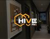 Hive Five image 0