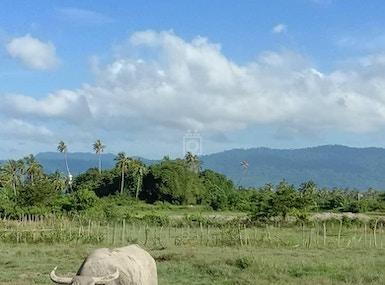 Jetpack Langkawi image 5