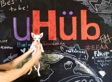 uHub image 3