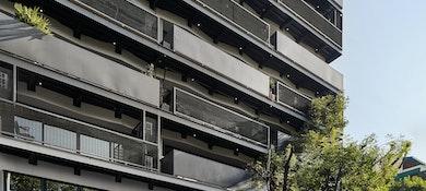 Colony Spaces Colima