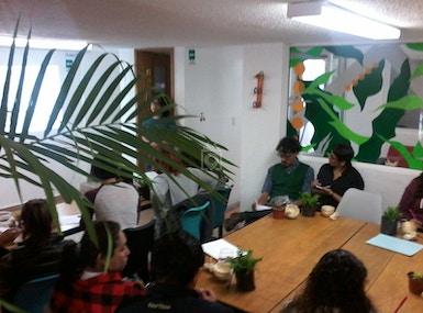 Planta Coworking image 3