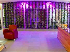 IVO Business Center City Shops Valle Dorado, Tlalnepantla de Baz