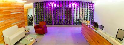 IVO Business Center City Shops Valle Dorado