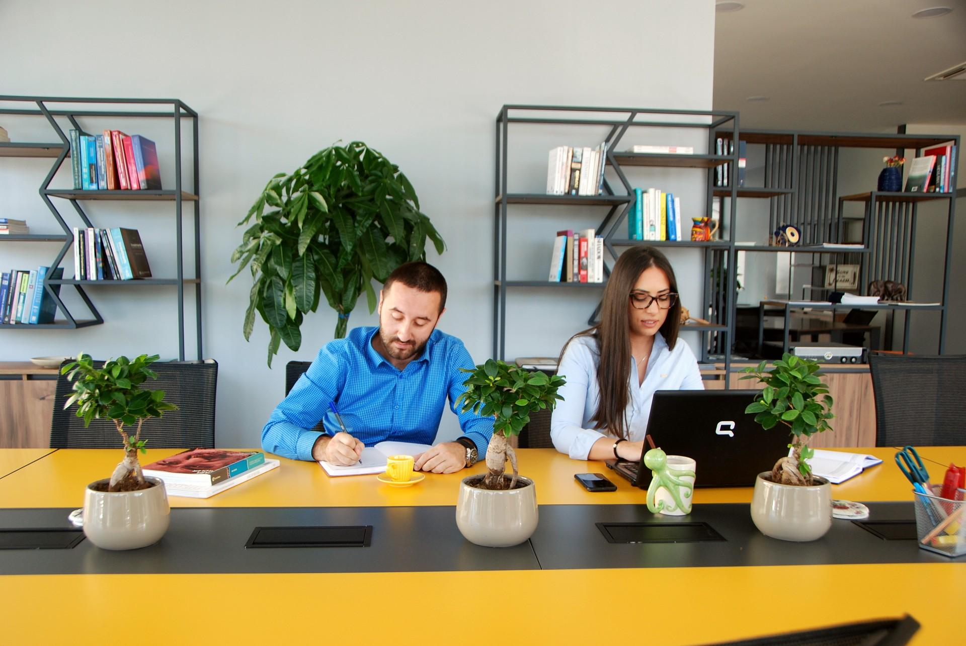 Work Hub Montenegro, Podgorica