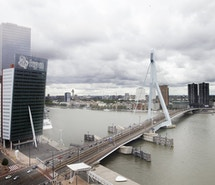 Tribes Rotterdam Wilhelmina Tower profile image