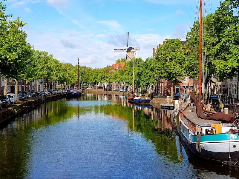 Roomin, Schiedam