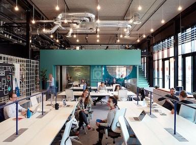 TSH Collab - The Hague image 4