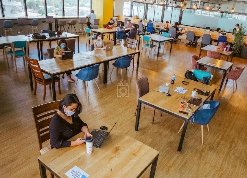 The Company Cebu - IT Park, Cebu City