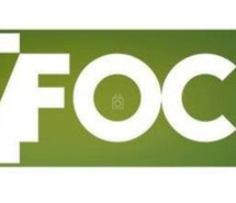 Hey Focus Lounge profile image