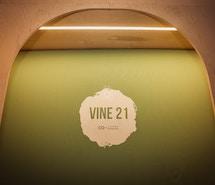Vine 21 profile image