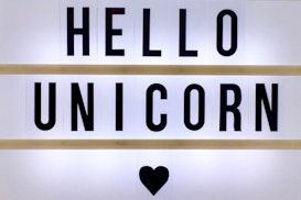 Hello Unicorn, Cluj-Napoca
