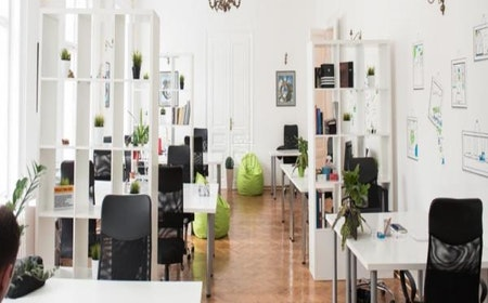 Smart Office, Belgrade