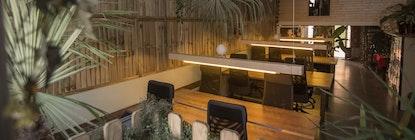 Jungle studio & coworking