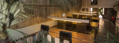 Jungle studio & coworking