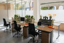 Bee Lab Coworking, Madrid