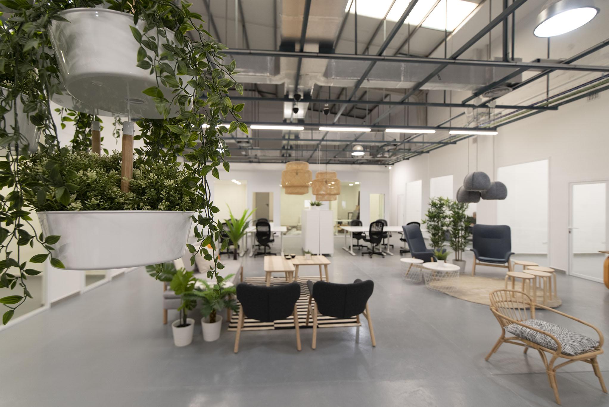 Grow Working Malaga, Malaga