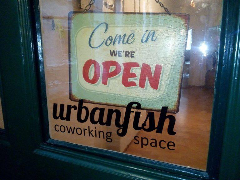 Urbanfish, Bern