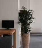 BockOffice Davos profile image