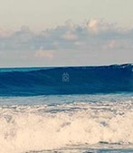Surf House Taiwan profile image