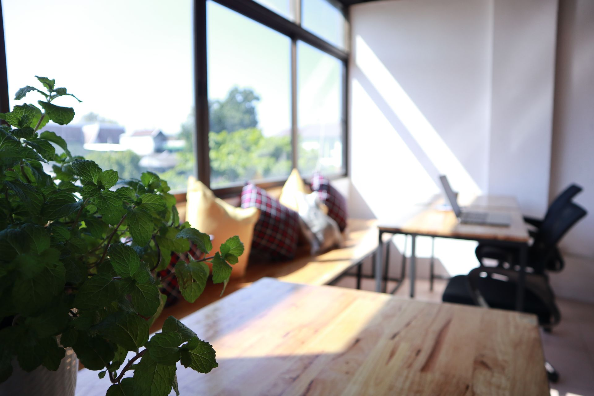 IN THE CITY Co-Living & Co-Working Space, Chiang Mai